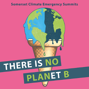 Somerset Climate Emergency Cone