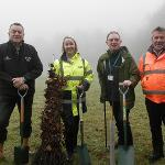 An image relating to Top trunks: Mendip tackles climate change with tree-planting scheme