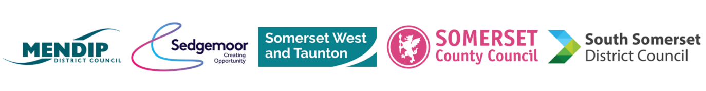 All Somerset Council logo