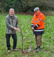An image relating to Mendip District Council and Mendip Hills AONB partnership plant 500+ trees